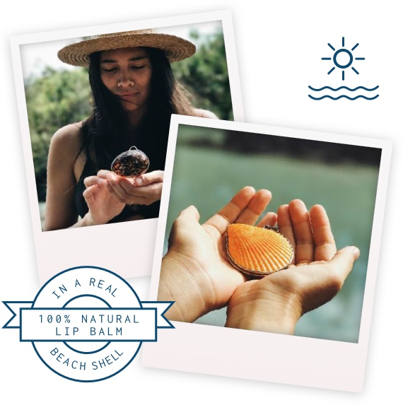 100 Natural Lip Balm Inside A Real Beach Shell